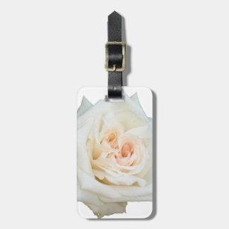Etiqueta De Bagagem Feche acima da opinião um rosa branco bonito