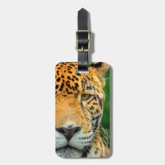 Etiqueta De Bagagem Fim-acima de uma cara do jaguar, Belize
