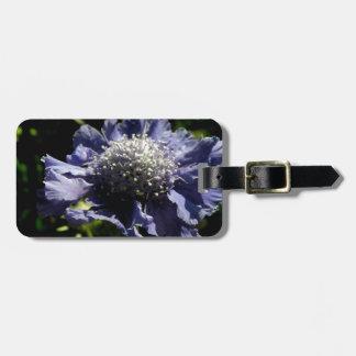 Etiqueta De Bagagem Flor azul de Scabiosa