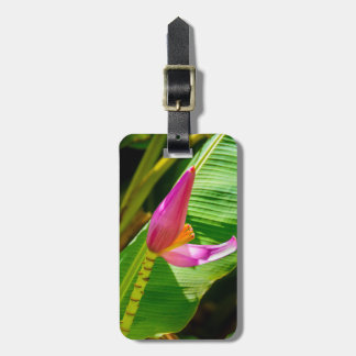 Etiqueta De Bagagem Flor da banana, jardins de Limahuli, Kauai, Havaí