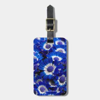 Etiqueta De Bagagem Flores bonitas do Cineraria dos azuis marinhos