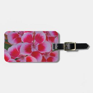 Etiqueta De Bagagem Flores cor-de-rosa do primavera