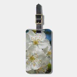 Etiqueta De Bagagem Flores de cerejeira brancas, primavera