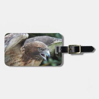 Etiqueta De Bagagem foto Vermelho-atada do falcão
