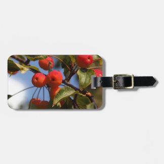 Etiqueta De Bagagem Frutas de uma árvore de maçã selvagem