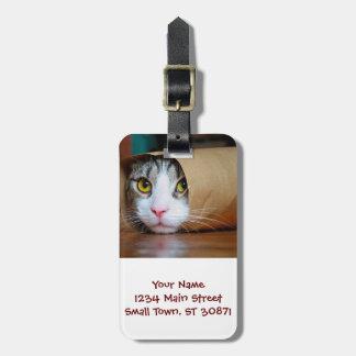 Etiqueta De Bagagem Gato de papel - gatos engraçados - meme do gato -