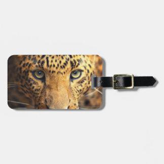 Etiqueta De Bagagem Leopardo manchado preto de Brown