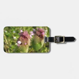 Etiqueta De Bagagem Morto-provocação roxa (purpureum do Lamium) no