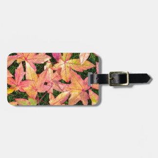 Etiqueta De Bagagem Muitas folhas de bordo coloridas do outono na