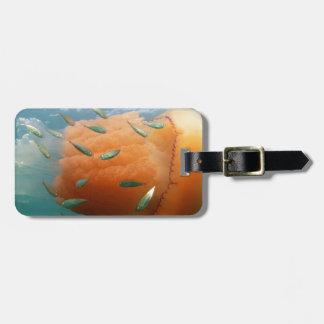 Etiqueta De Bagagem Natações das medusa do tambor com cavala