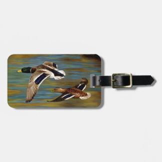 Etiqueta De Bagagem O pato selvagem Ducks o voo sobre a lagoa