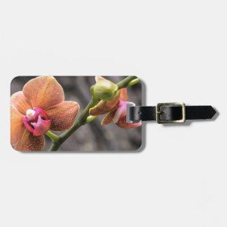 Etiqueta De Bagagem Orquídea alaranjada