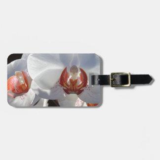 Etiqueta De Bagagem Orquídea branca