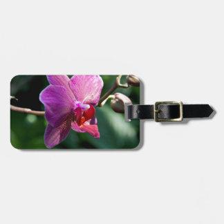 Etiqueta De Bagagem Orquídea mágica