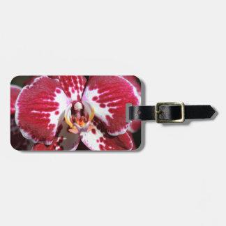 Etiqueta De Bagagem Orquídea vermelha