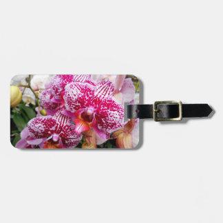 Etiqueta De Bagagem Orquídeas cor-de-rosa do Dendrobium