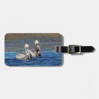 Etiqueta De Bagagem Pares de pelicanos