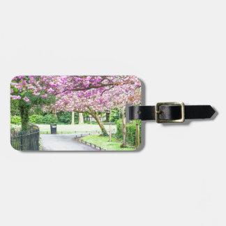 Etiqueta De Bagagem Parque bonito durante o primavera