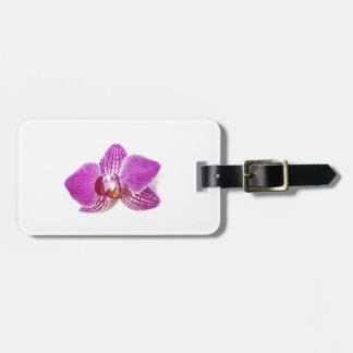 Etiqueta De Bagagem Pintura floral do aquarel do phalaenopsis do Lilac