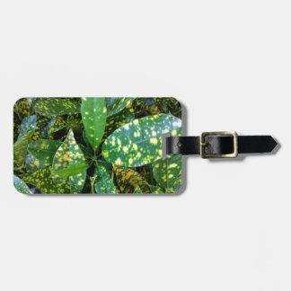 Etiqueta De Bagagem Planta do Croton