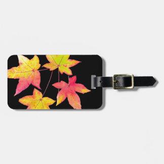 Etiqueta De Bagagem Quatro folhas de outono coloridas no fundo preto