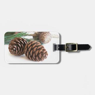 Etiqueta De Bagagem Ramo e cones do pinho