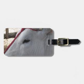 Etiqueta De Bagagem Retrato do Chianina, raça italiana do gado