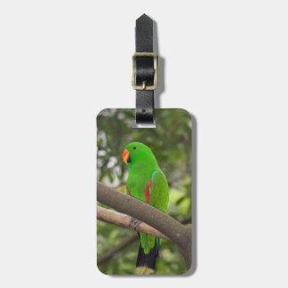 Etiqueta De Bagagem Retrato verde do papagaio