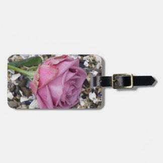 Etiqueta De Bagagem Rosa empoeirado do rosa em Seashells quebrados
