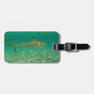 Etiqueta De Bagagem Shark in bora bora