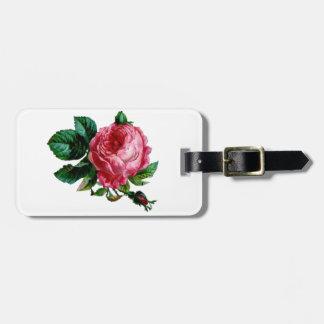 Etiqueta De Bagagem Tag cor-de-rosa da bagagem da couve