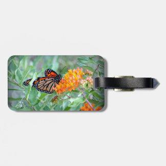 Etiqueta De Bagagem Tag da bagagem da borboleta