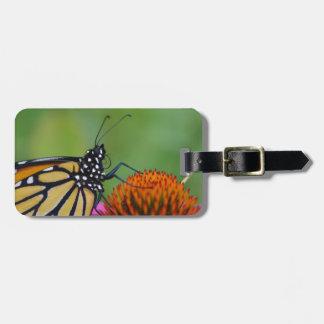 Etiqueta De Bagagem Tag da bagagem da borboleta de monarca