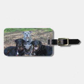 Etiqueta De Bagagem Tag da bagagem da imagem da família do cachorrinho