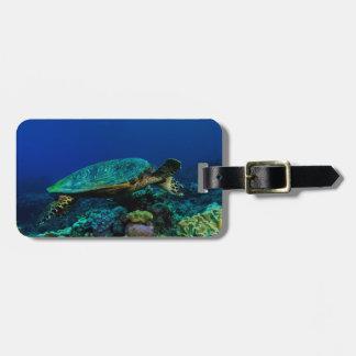 Etiqueta De Bagagem Tag da bagagem da tartaruga de mar de Hawksbill