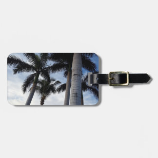 Etiqueta De Bagagem Tag da bagagem das palmeiras de Tenerife