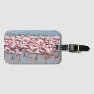 Etiqueta De Bagagem Tag da bagagem do flamingo