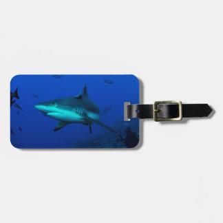 Etiqueta De Bagagem Tag da bagagem do tubarão do recife