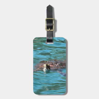 Etiqueta De Bagagem Tartaruga de mar da boba