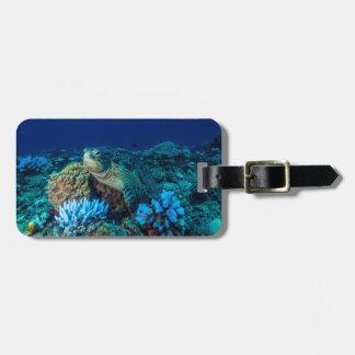 Etiqueta De Bagagem Tartaruga de mar no grande recife de coral