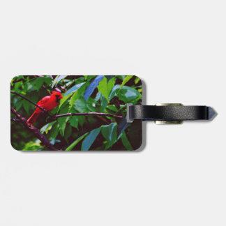 Etiqueta De Bagagem Um pássaro vermelho senta-se em um cargo