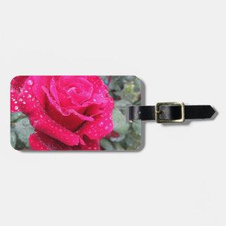 Etiqueta De Bagagem Única flor da rosa vermelha com gotas de água