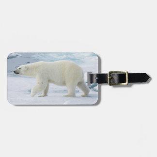 Etiqueta De Bagagem Urso polar que anda, Noruega