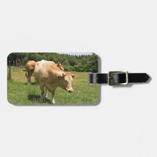 Etiqueta De Bagagem Vacas no campo, EL Camino, espanha 2