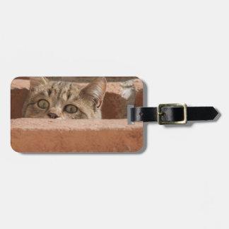 Etiqueta De Bagagem Wildcat novo curioso da atenção dos olhos de gato