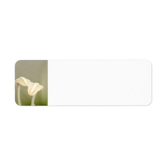 Etiqueta de endereço de duas flores