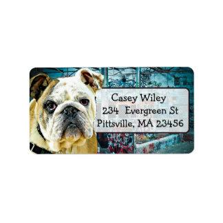 Etiqueta de endereço do fundo dos grafites do cão