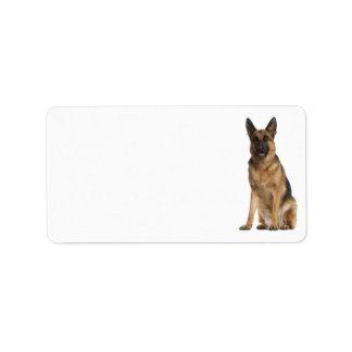 Etiqueta de endereço do german shepherd