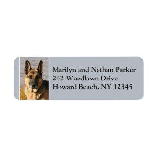 Etiqueta de endereço do remetente 2 da cara do cão