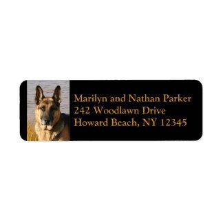 Etiqueta de endereço do remetente da cara do cão